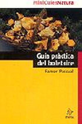 GUIA PRACTICA BOLETAIRE
