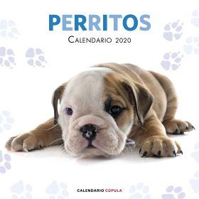 CALENDARIO PERRITOS 2020 CUPULA