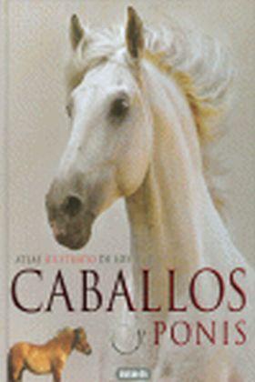 CABALLOS Y PONIS